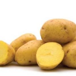 Organic Potatoes – 10lb Bag