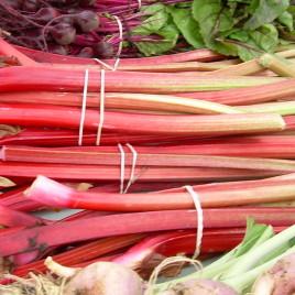 Rhubarb $5/7 stocks